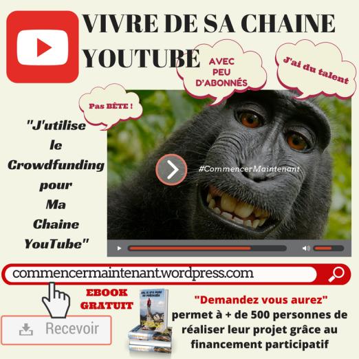 comment-utiliser-le-financement-participatif-pour-vivre-de-sa-chaine-youtube