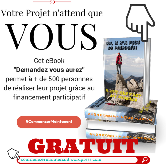 ebook gratuit PDF financement participatif crowdfunding